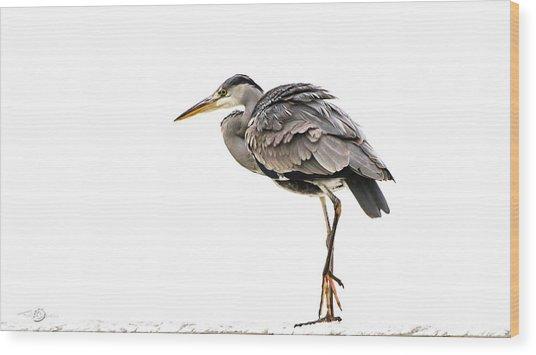 Grey Heron On Snow Wood Print