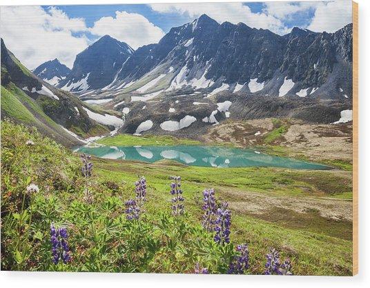 Grizzly Bear Lake Wood Print