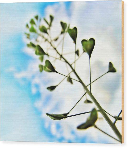 Growing Love Wood Print