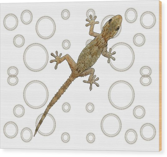 H Is For House Gecko Wood Print