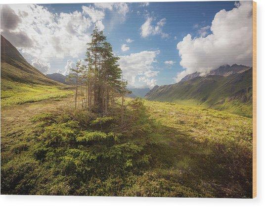 Haiku Forest Wood Print