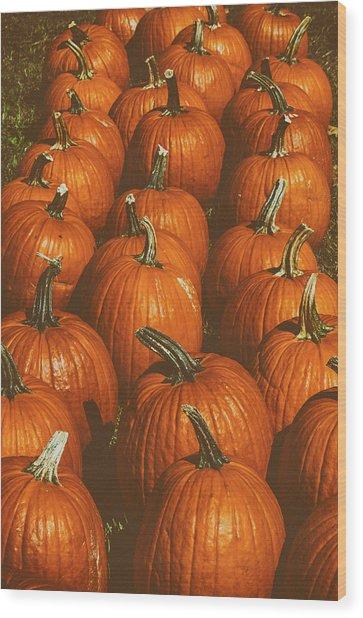 Halloween Harvest - 2 Wood Print