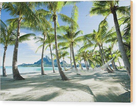 Hammock At Bora Bora, Tahiti Wood Print by Yusuke Okada/amanaimagesrf