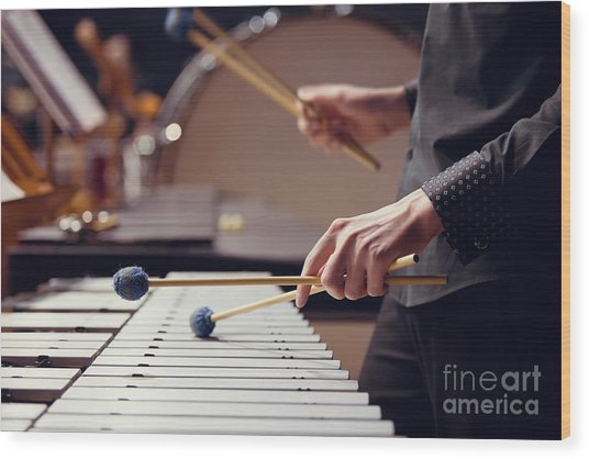 Hands Of Musician Playing The Vibraphone Wood Print