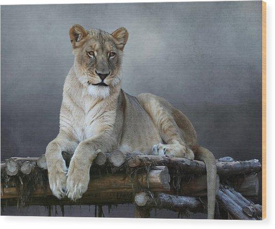 Happy Lioness Wood Print