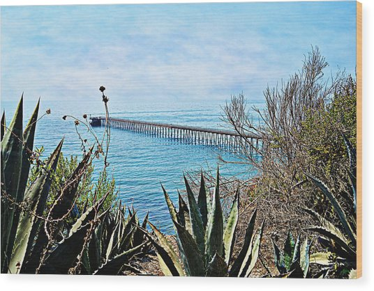 Haskell Beach Pier Wood Print