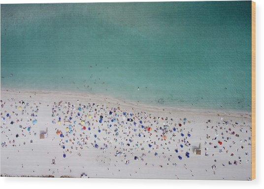 Haulover, Miami Wood Print
