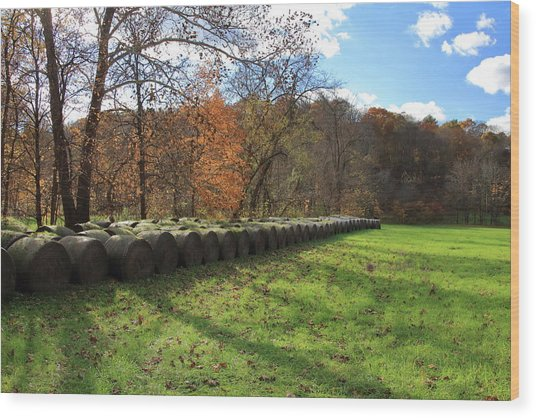 Wood Print featuring the photograph Hay Bales On An Autumn Day by Angela Murdock