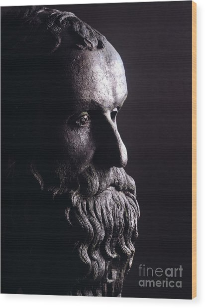 Head Of A Philosopher Wood Print