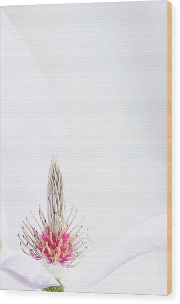 The Heart Of A Magnolia Wood Print