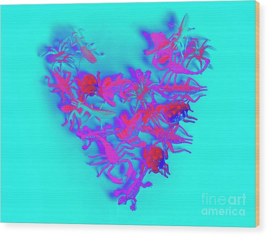 Heart Of The Wild Wood Print