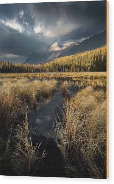 Heaven's Breath / Whitefish, Montana  Wood Print