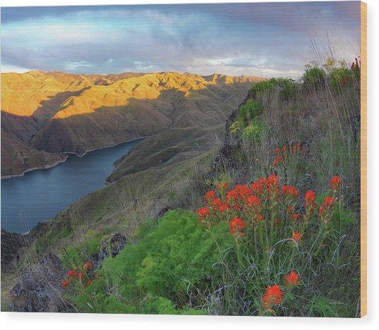 Hells Canyon View Wood Print by Leland D Howard