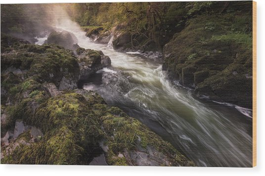 Wood Print featuring the photograph The Teifi At Henllan Falls by Elliott Coleman