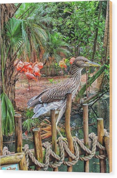 Heron On Guard Wood Print