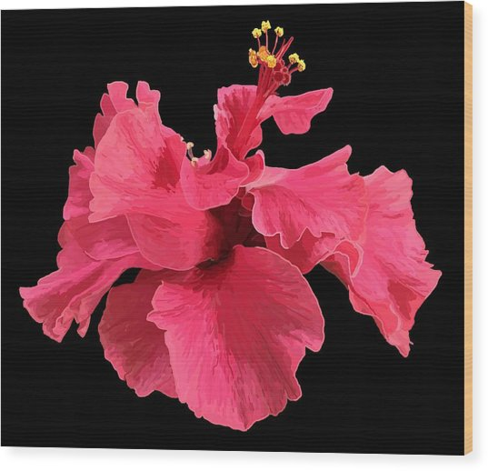 Wood Print featuring the drawing Hibiscus Pink In Black by Joan Stratton