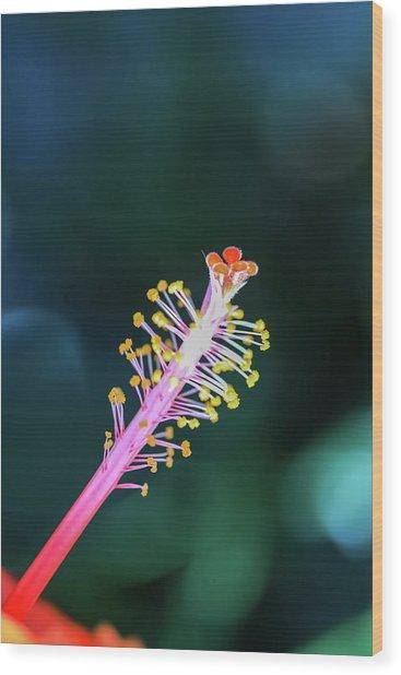 Hibiscus' Pistil Wood Print