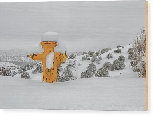 High Desert Hydrant Wood Print