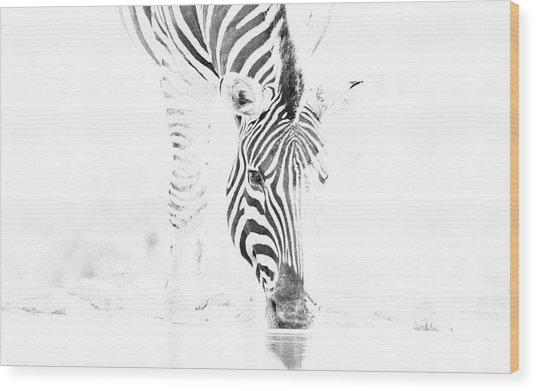 High Key Zebra Drinking Wood Print