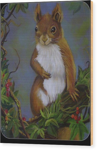 Highland Squirrel Wood Print by Janet Silkoff