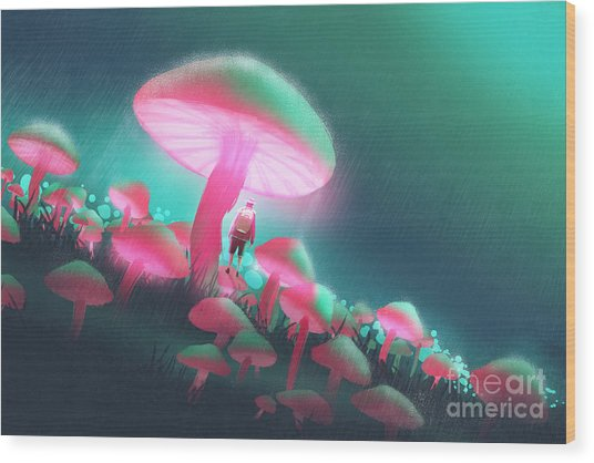 Hiker Man In The Big Mushrooms Forest Wood Print
