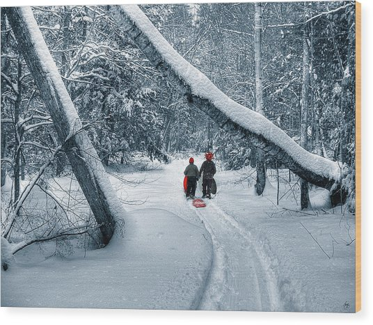 Hiking Into The Gully Wood Print