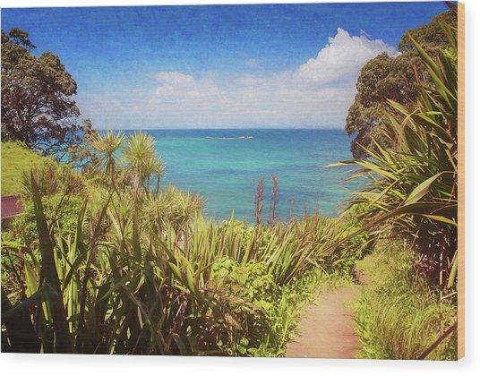 Hiking On Tiritiri Matangi New Zealand Painterly Wood Print