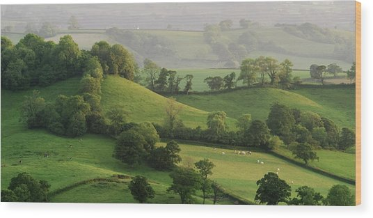 Hills Wood Print by Lewis Gillingham
