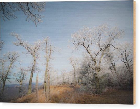 Hilltop Hoarfrost Wood Print