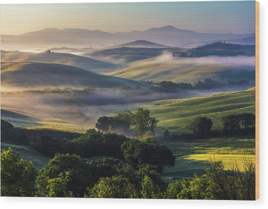 Hilly Tuscany Valley Wood Print