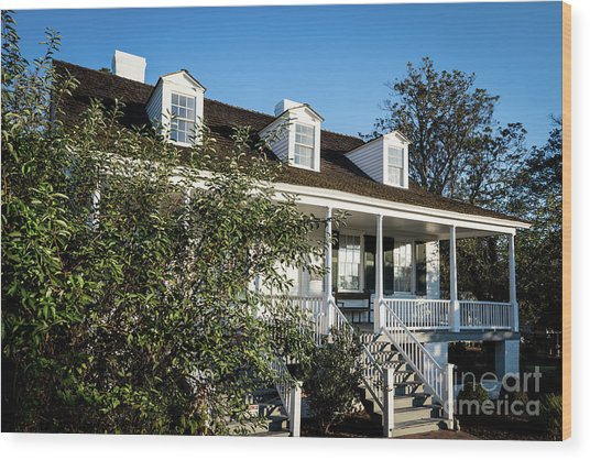 Historic Meadow Garden Augusta Ga Wood Print