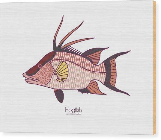 Hogfish Wood Print