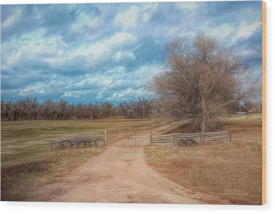 Home On The Range Wood Print