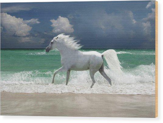 Horse Running Through Surf Wood Print