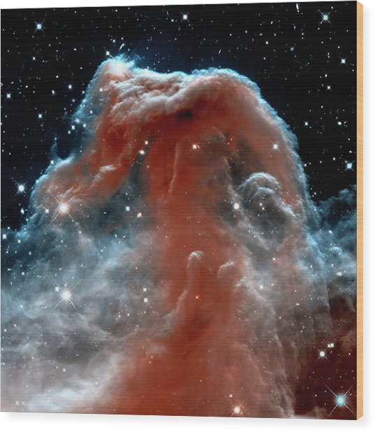 Wood Print featuring the photograph Horsehead Nebula Outer Space Photograph by Bill Swartwout Fine Art Photography