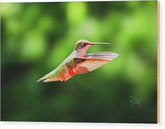 Hummingbird Flying Wood Print