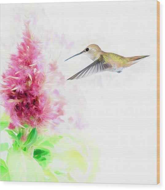 Hummingbird Pastels Wood Print