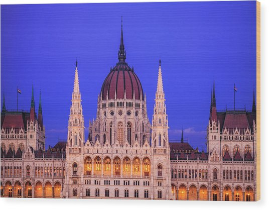 Hungarian Parliament Wood Print by Andrew Soundarajan