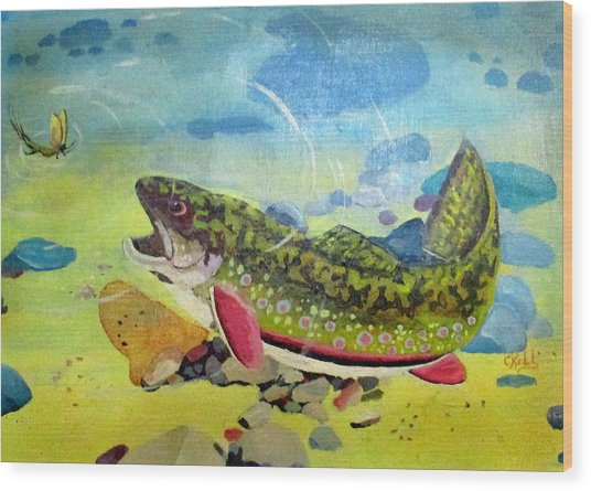 Hungry Trout Wood Print