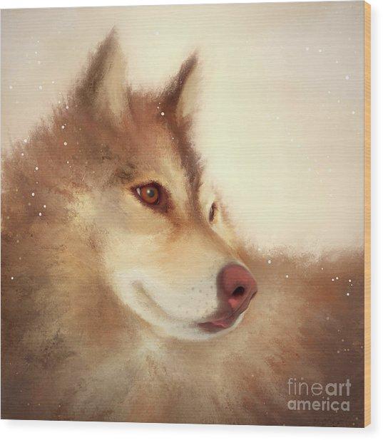 Husky Dog Wood Print