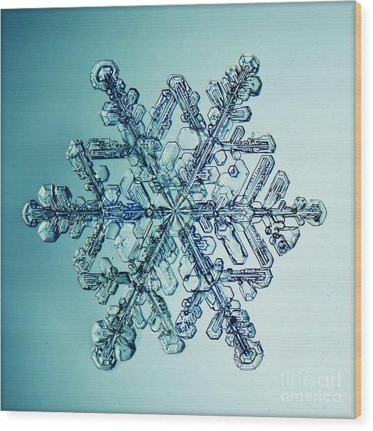 Ice Crystal Snowflake Macro Wood Print