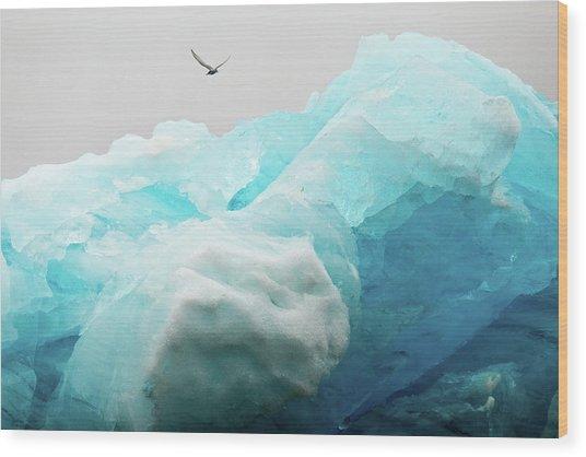Iceland Iceberg Wood Print