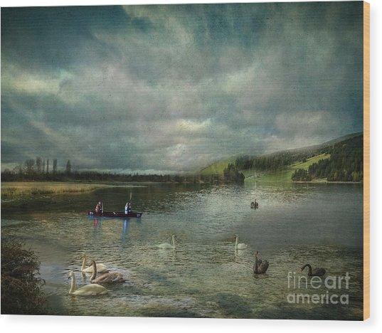 Idyllic Swans Lake Wood Print