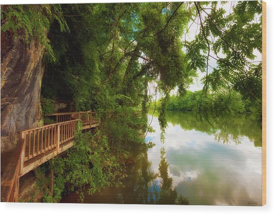 Ijam Nature Park Boardwalk Along The Tennessee River Wood Print