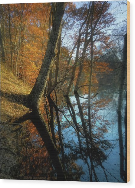 In Arcadia Wood Print