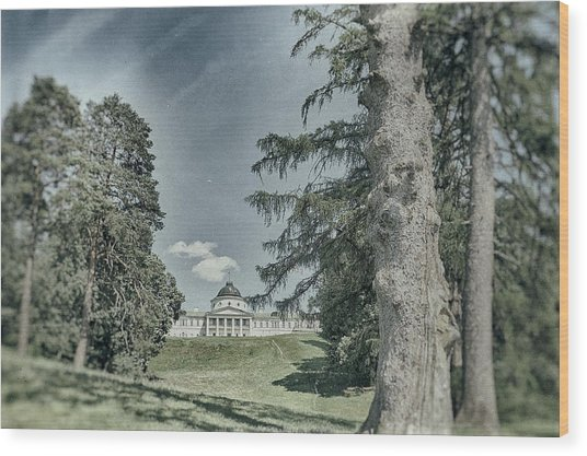 Wood Print featuring the photograph In Old Park. Kachanivka, 2017. by Andriy Maykovskyi