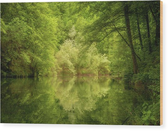 Wood Print featuring the photograph In The Heart Of Nature by Mirko Chessari