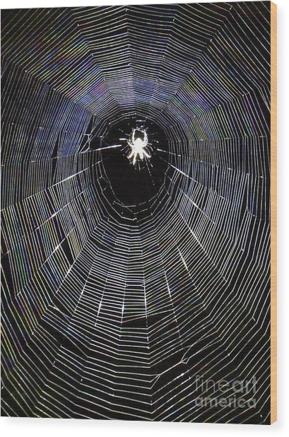 In The Web Wood Print