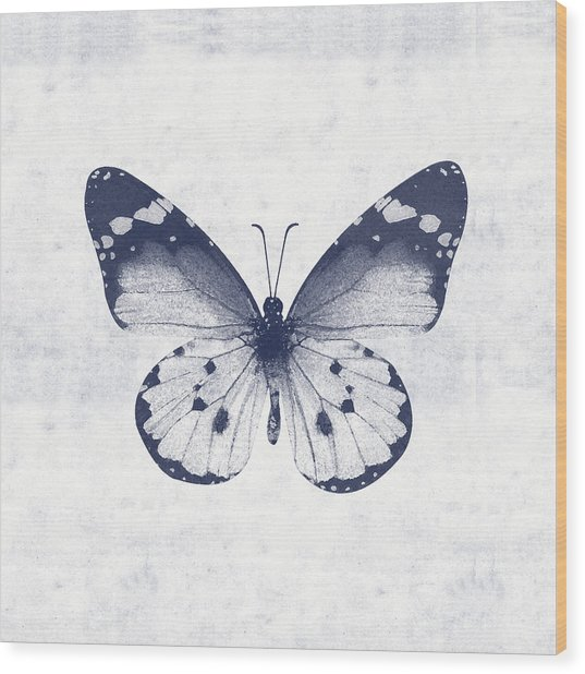 Indigo And White Butterfly 1- Art By Linda Woods Wood Print