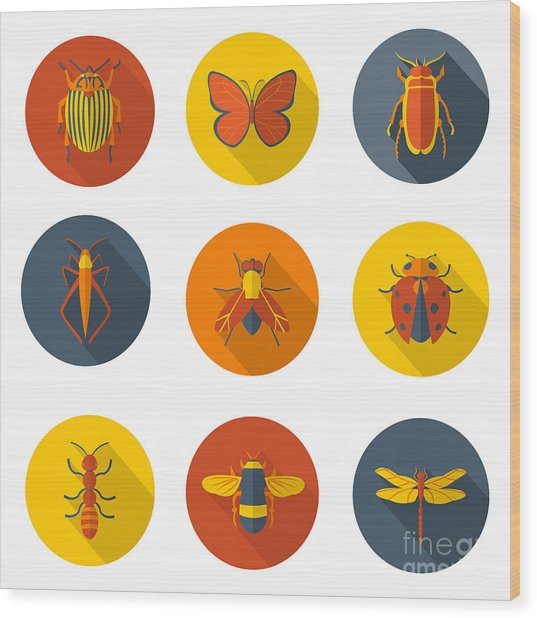 Insects Flat Icons Wood Print